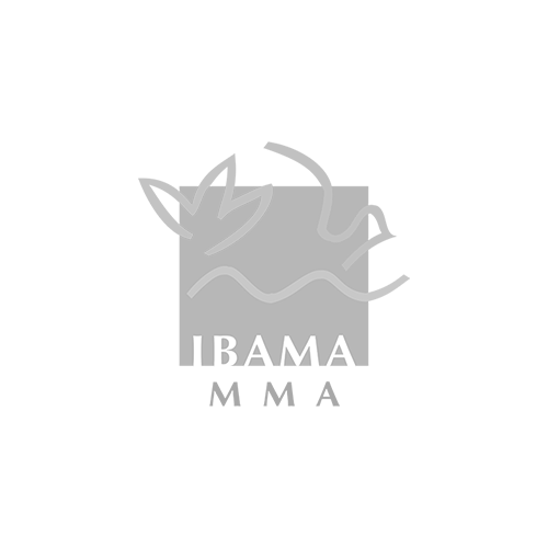IBAMA GREY SMALL